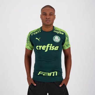 Camisa Puma Palmeiras Treino 2020 Masculina